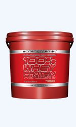 100% WHEY Protein PROFESSIONAL 5kg SciTec